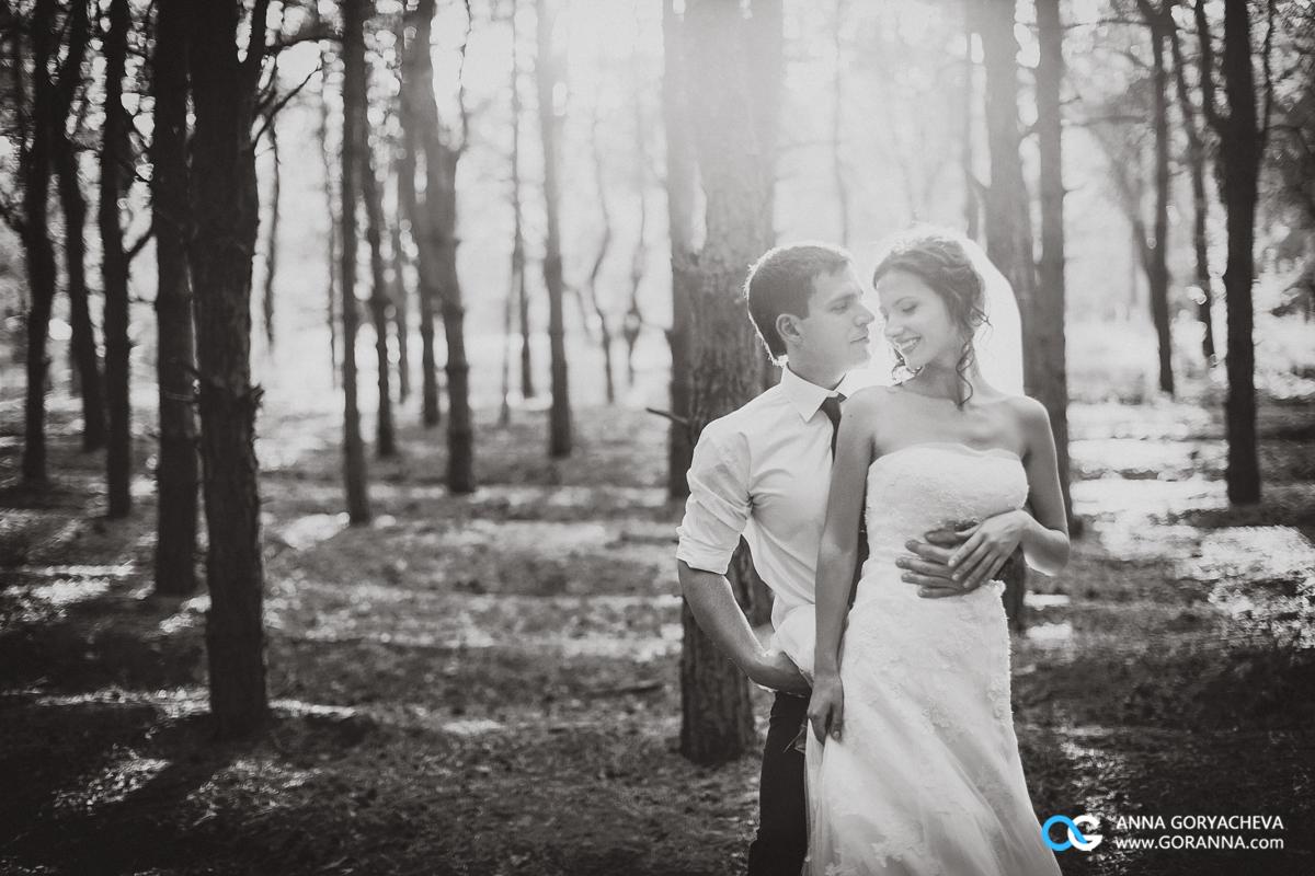 Wedding_16_08_13-502 copy